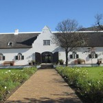Steenberg Vineyards, Constantia Wine Route. Table Mountain Treks and Tours. Guided Tours.