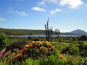 Woodhead Dam, Table Mountain. Table Mountain Treks and Tours. Cape Hiking Trails.